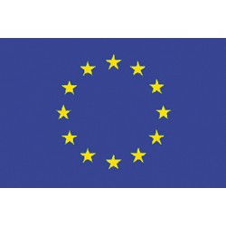 The flag of Europe Cm. 20 x 30